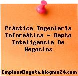 Práctica Ingeniería Informática – Depto Inteligencia De Negocios