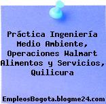 Práctica Ingeniería Medio Ambiente, Operaciones Walmart Alimentos y Servicios, Quilicura