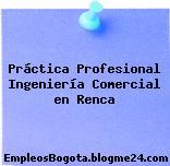 Práctica Profesional Ingeniería Comercial en Renca