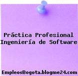 Práctica Profesional Ingeniería de Software