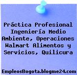 Práctica Profesional Ingeniería Medio Ambiente, Operaciones Walmart Alimentos y Servicios, Quilicura