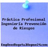 Práctica Profesional Ingeniería Prevención de Riesgos