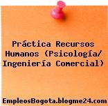 Práctica Recursos Humanos (Psicología/ Ingeniería Comercial)