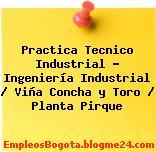 Practica Tecnico Industrial – Ingeniería Industrial / Viña Concha y Toro / Planta Pirque