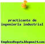 practicante de ingeniería industrial