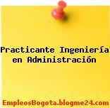 Practicante Ingeniería en Administración
