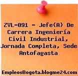 ZVL-091 – Jefe(A) De Carrera Ingeniería Civil Industrial, Jornada Completa, Sede Antofagasta