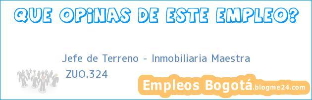 Jefe de Terreno – Inmobiliaria Maestra | ZUO.324