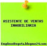 ASISTENTE DE VENTAS INMOBILIARIA