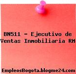 BN511 – Ejecutivo de Ventas Inmobiliaria RM
