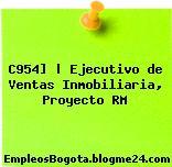 C954]   Ejecutivo de Ventas Inmobiliaria, Proyecto RM