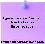 Ejecutiva de Ventas Inmobiliaria Antofagasta
