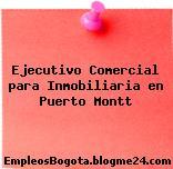 Ejecutivo Comercial para Inmobiliaria en Puerto Montt