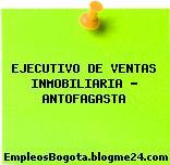 EJECUTIVO DE VENTAS INMOBILIARIA – ANTOFAGASTA