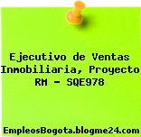 Ejecutivo de Ventas Inmobiliaria, Proyecto RM – SQE978