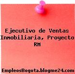Ejecutivo de Ventas Inmobiliaria, Proyecto RM