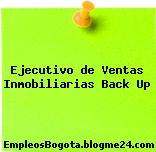 Ejecutivo de Ventas Inmobiliarias Back Up