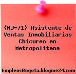 (HJ-71) Asistente de Ventas Inmobiliarias Chicureo en Metropolitana