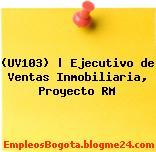 (UV103)   Ejecutivo de Ventas Inmobiliaria, Proyecto RM
