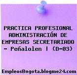 PRACTICA PROFESIONAL ADMINISTRACIÓN DE EMPRESAS SECRETARIADO – Peñalolen   (D-03)
