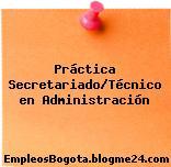 Práctica Secretariado/Técnico en Administración