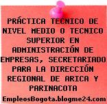 PRÁCTICA TECNICO DE NIVEL MEDIO O TECNICO SUPERIOR EN ADMINISTRACIÓN DE EMPRESAS, SECRETARIADO PARA LA DIRECCIÓN REGIONAL DE ARICA Y PARINACOTA