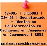 (Z-66) | [ME589] | IS-423 | Secretariado – Técnico en Administración en Cauquenes en Cauquenes en Cauquenes | R653