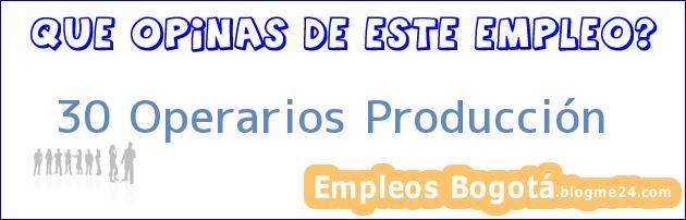 30 Operarios Producción