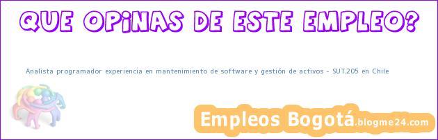 Analista programador experiencia en mantenimiento de software y gestión de activos – SUT.205 en Chile