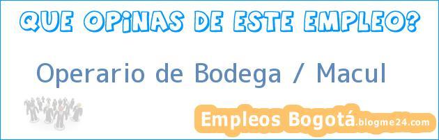 Operario de Bodega / Macul