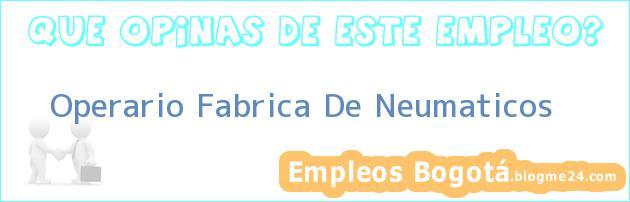 Operario Fabrica De Neumaticos