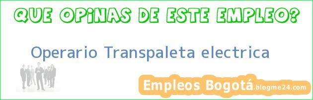 Operario Transpaleta electrica