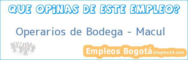Operarios de Bodega – Macul