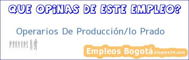 Operarios De Producción/lo Prado