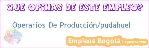 Operarios De Producción/pudahuel