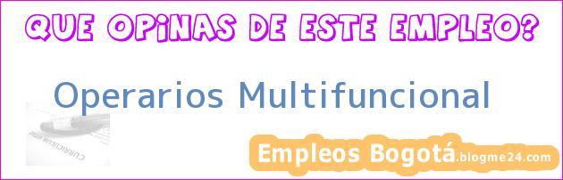 Operarios Multifuncional