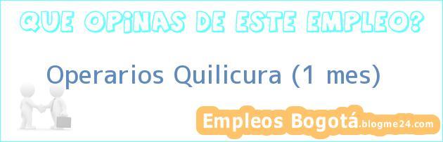 Operarios Quilicura (1 mes)