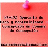 KP-172 Operario de Aseo y Mantenimiento – Concepción en Comuna de Concepción