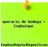 operario de bodega – Coyhaique