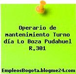 Operario de mantenimiento Turno día Lo Boza Pudahuel R.301