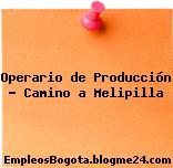 Operario de Producción – Camino a Melipilla