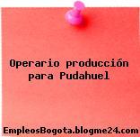 Operario producción para Pudahuel