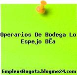 Operarios De Bodega Lo Espejo DÌa