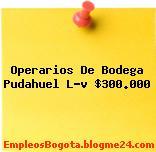 Operarios De Bodega Pudahuel L-v $300.000
