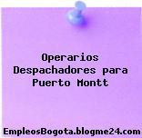 Operarios Despachadores para Puerto Montt