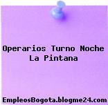 Operarios Turno Noche La Pintana