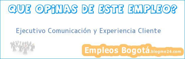 Ejecutivo Comunicación y Experiencia Cliente