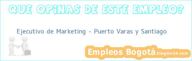 Ejecutivo de Marketing – Puerto Varas y Santiago