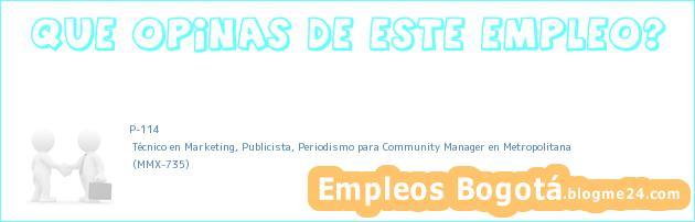 P-114 | Técnico en Marketing, Publicista, Periodismo para Community Manager en Metropolitana | (MMX-735)