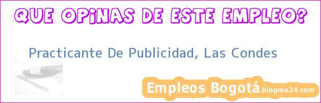 Practicante De Publicidad, Las Condes